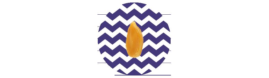 Seeds_1